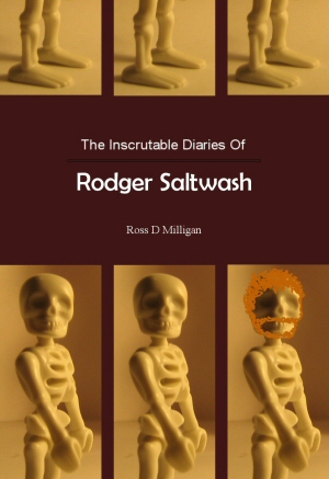Rodger Saltwash Kindle eBook